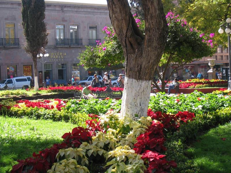 Plazas of queretaro for Jardin zenea queretaro